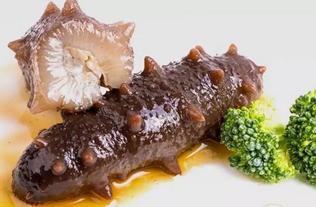正确吃海参的几个姿势,吃之前最好了解一下