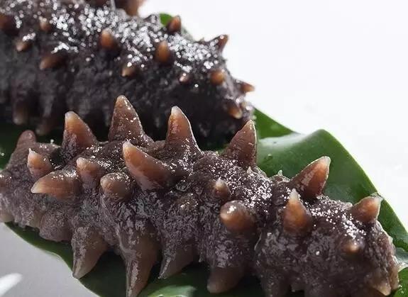 吃海参还有很大的学问,一天吃多少海参最适宜?海参滋补也要注意量