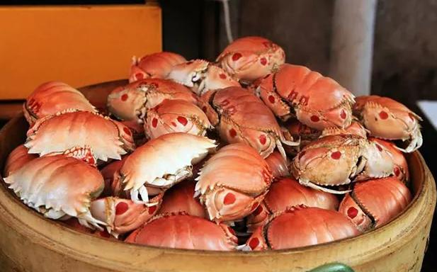 像馒头一样的螃蟹你见过吗?又叫傻瓜蟹