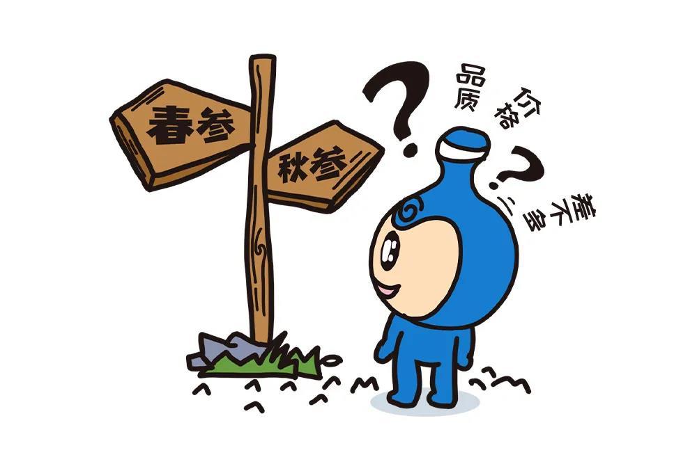 海宝答疑丨春参、秋参,哪个好?